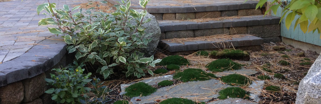 Mapes Know Landscaping in Tahoe